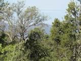 11820 Lost Man Canyon Way - Photo 18