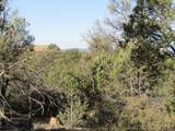 11820 Lost Man Canyon Way - Photo 2