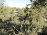 11820 Lost Man Canyon Way - Photo 4