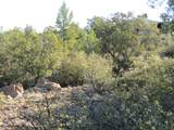 11820 Lost Man Canyon Way - Photo 7