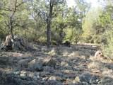 11820 Lost Man Canyon Way - Photo 8