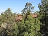 11820 Lost Man Canyon Way - Photo 9