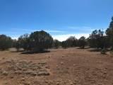 1203 County Line Circle - Photo 5