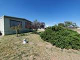 206 Outback Road - Photo 7
