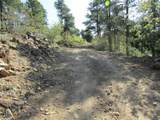 261a Forest Service Rd - Photo 12