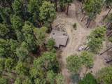 1450 Forest Service Road 81 Road - Photo 4