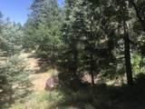 0 Near Cash Lode Trail - Photo 1