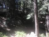 0 Near Cash Lode Trail - Photo 2