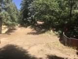 0 Near Cash Lode Trail - Photo 3