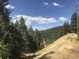 0 Near Cash Lode Trail - Photo 5
