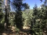 0 Near Cash Lode Trail - Photo 7
