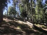 0 Near Cash Lode Trail - Photo 8
