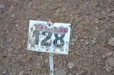 128 Monte Cristo - Photo 12