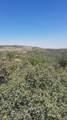 1534 Rudys Trail - Photo 7