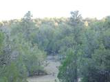 887 Sierra Verde Ranch - Photo 17