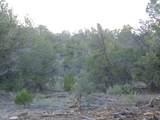 887 Sierra Verde Ranch - Photo 18