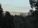887 Sierra Verde Ranch - Photo 19