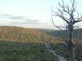 887 Sierra Verde Ranch - Photo 29