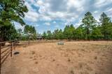 2450 Shadow Valley Ranch Trail - Photo 57