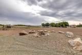 10135 Antelope Meadows Drive - Photo 23