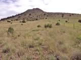 11925 Triple Crown Trail - Photo 1
