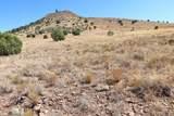 11925 Triple Crown Trail - Photo 14