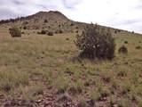11925 Triple Crown Trail - Photo 2