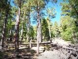 1500 Forest Service Rd. 12.488 - Photo 1
