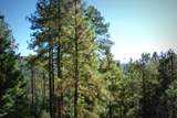 1500 Forest Service Rd. 12.488 - Photo 11