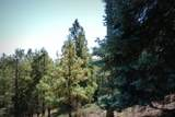 1500 Forest Service Rd. 12.488 - Photo 13