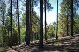 1500 Forest Service Rd. 12.488 - Photo 27