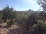 2309 Loma Vista Drive - Photo 3