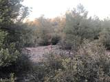 7700 Meadowlark Road - Photo 4