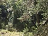 00 Pristine Pines Drive - Photo 1