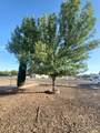 20470 Cactus Wren Drive - Photo 38