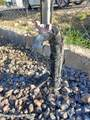 20470 Cactus Wren Drive - Photo 44
