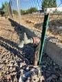 20470 Cactus Wren Drive - Photo 45