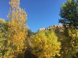 4493 Twisted Trail - Photo 18