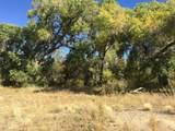4493 Twisted Trail - Photo 8