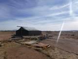 1675 Antelope Run Road - Photo 4