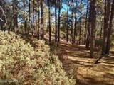 0 Mt Francis Road - Photo 8