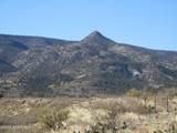 3050 Salt Mine Road - Photo 59