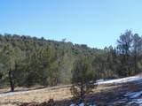 892 Sierra Verde Ranch - Photo 46