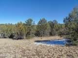 892 Sierra Verde Ranch - Photo 48