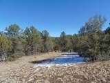 892 Sierra Verde Ranch - Photo 49