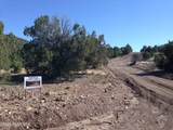 Lot 45 Crooked Trail - Photo 4