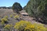 00 Longbranch Trail - Photo 5