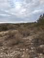 1020 Verde Ranch Road - Photo 9
