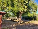 34385 K Field Road - Photo 10