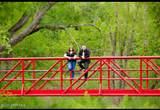 9360 Steven Trail - Photo 33